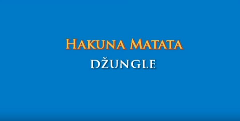 Hakuna Matata – Džungle